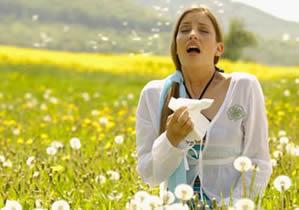 allergiepollen
