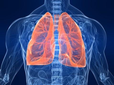 greffe-de-poumons-102917_XL
